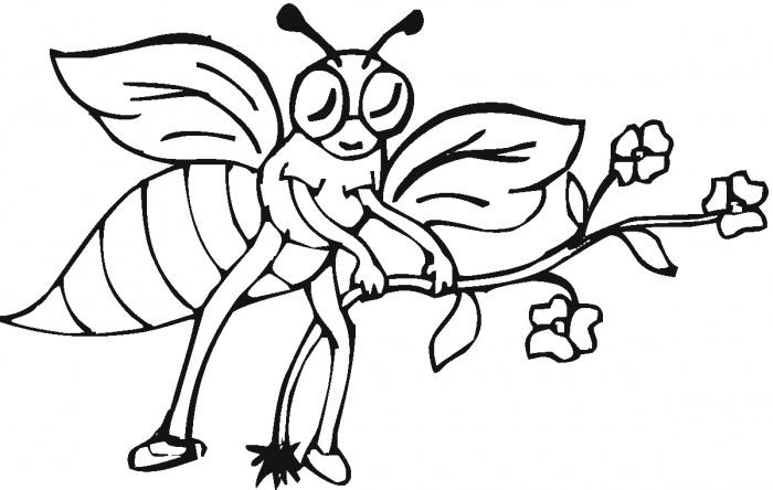 Mewarnai Lebah Kelompok Bermain Alia