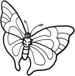 butterfly-5-coloring-page.gif