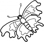 butterfly-6-coloring-page.gif