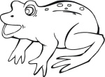 frog-17-coloring-page.gif
