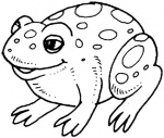 frog-9-coloring-page.gif