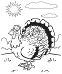 ist2_7548642-coloring-book-turkey