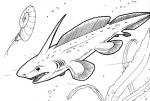 Plevrocantus-coloring-page.gif