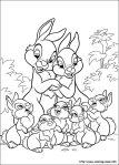 bunnies-14