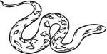 rattlesnake-coloring-page