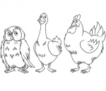 owl-goose-and-chicken-coloring-page.gif